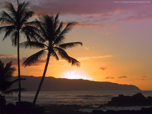 sunset-north-shore-oahu